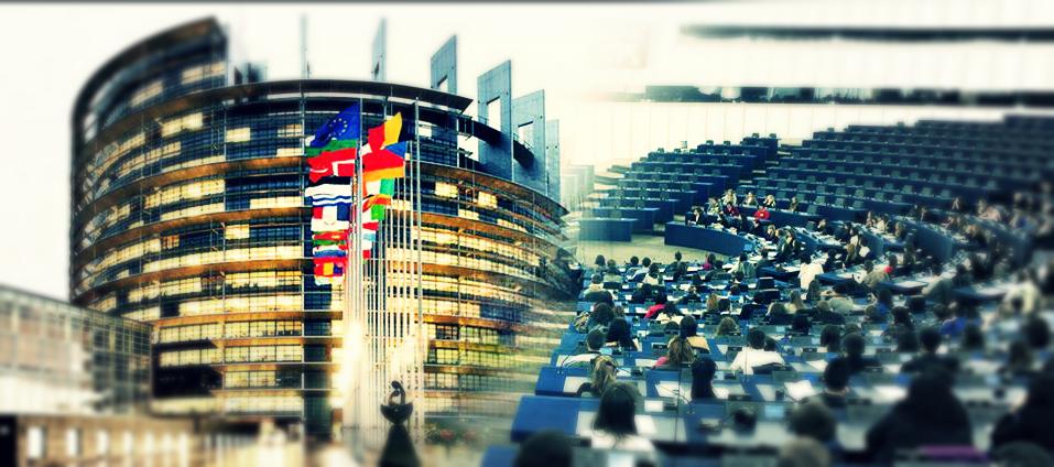 G1 õppijad osalesid Euroopa Partnerkoolide keskkonna- ja kliimamuutuste teemalisel veebikohtumisel